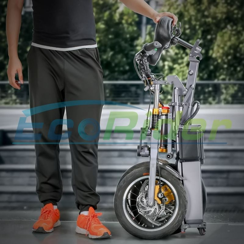 New Design Foldable Electric Scooter Three Wheels 48V 250W Folding Electric Bike